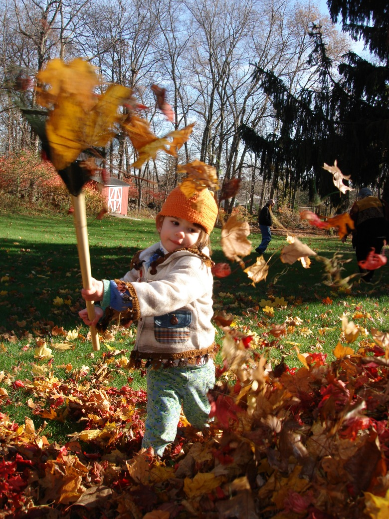 raking, leaves, fall, inspiration, children