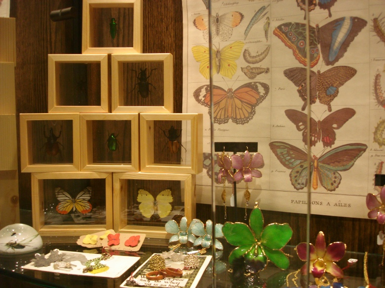 butterflies, display, retail, interior design, nyc